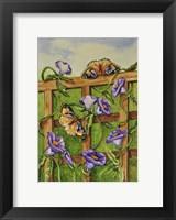 Framed Monarchs & Hydrangeas