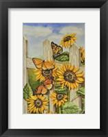 Framed Painted Ladies & Morning Glories