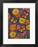 Framed Monarch & Gerba Daisies