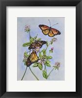 Framed Irish Monarchs