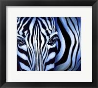 Framed Blue Zebra
