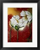 Framed White Poppies on Red