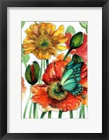 Framed Poppies and Blue Butterfly
