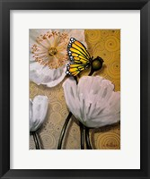 Framed White Poppy with Butterfly