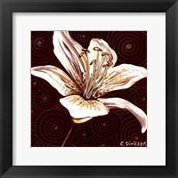 Framed Tiger Lily 1