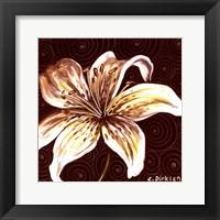 Framed Tiger Lily 2