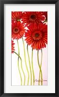 Framed Red Gerberas
