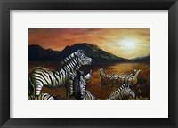 Framed Zebra Sunset