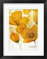 Framed Yellow Poppies
