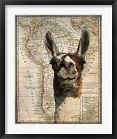 Framed South America Llama Map