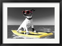 Framed Pop of Color Surf's Up Dog