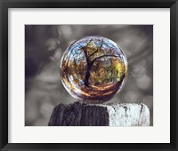 Framed Pop of Color Glass Sphere