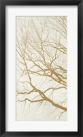 Framed Golden Tree I