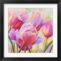 Framed Tulips in Wonderland I