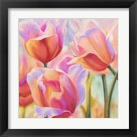 Framed Tulips in Wonderland II
