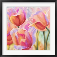 Framed Tulips in Wonderland II