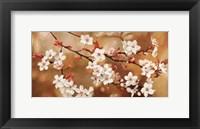Framed Sakura