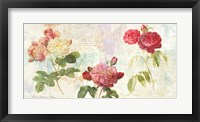 Framed Redoute's Roses 2.0