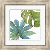Framed Tropical Blush VII
