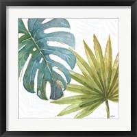 Framed Tropical Blush VIII
