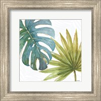 Framed Tropical Blush VIII