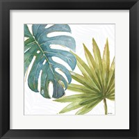 Tropical Blush VIII Framed Print