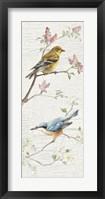Framed Vintage Birds Panel I