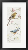 Framed Vintage Birds Panel I