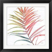 Framed Tropical Blush VI