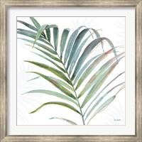 Framed Tropical Blush V