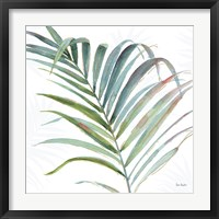 Framed Tropical Blush V