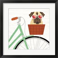 Framed Beach Bums Pug Bicycle I