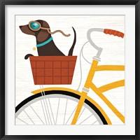 Framed Beach Bums Dachshund Bicycle I