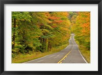 Framed Roadway through White Mountain National Forest, New Hampshire