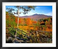 Framed Autumn landscape of Mount Chocorua, New England, New Hampshire