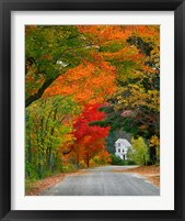 Framed Road lined in fall color, Andover, New England, New Hampshire
