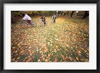 Framed Riding Bikes in Late Fall, New Hampshire