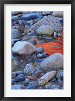 Framed Fall Colors Reflect in Saco River, New Hampshire