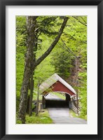 Framed Flume Covered Bridge, Pemigewasset River, Franconia Notch State Park, New Hampshire
