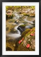Framed stream in fall, Grafton, New Hampshire