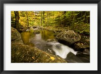 Framed Autumn stream in Grafton, New Hampshire