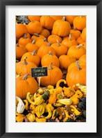 Framed Gourds, Meredith, New Hampshire