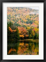 Framed Ammonoosuc Lake in fall, White Mountain National Forest, New Hampshire