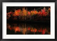 Framed Fall Foliage with Reflections, New Hampshire