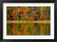 Framed Reflected autumn colors at Echo Lake State Park, New Hampshire