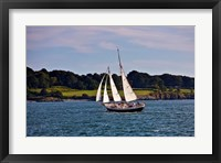 Framed Sailing in Newport, Rhode Island