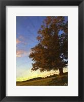 Framed Tree Poem