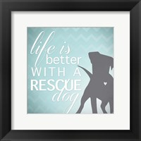 Framed Better with a Rescue Dog