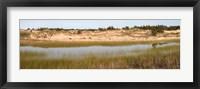 Framed Sand Dunes and Marsh, Michigan