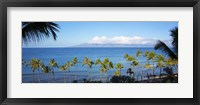 Framed Palm Trees on the Beach, Maui, Hawaii